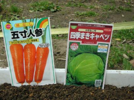 P1020477野菜2