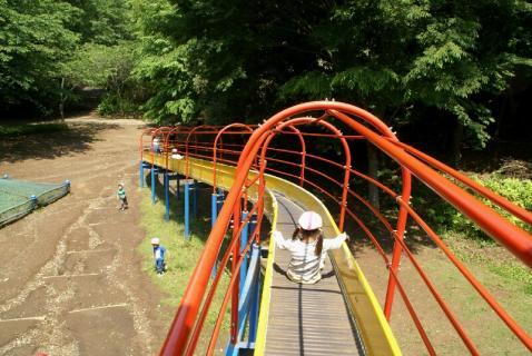 DSC01379公園5