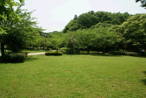 DSC01479公園1
