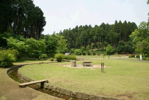 DSC01578公園1