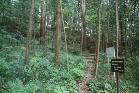 DSC02393竹4