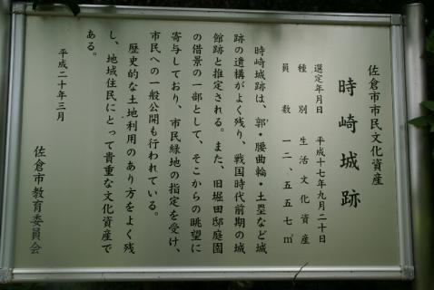 DSC02398竹6