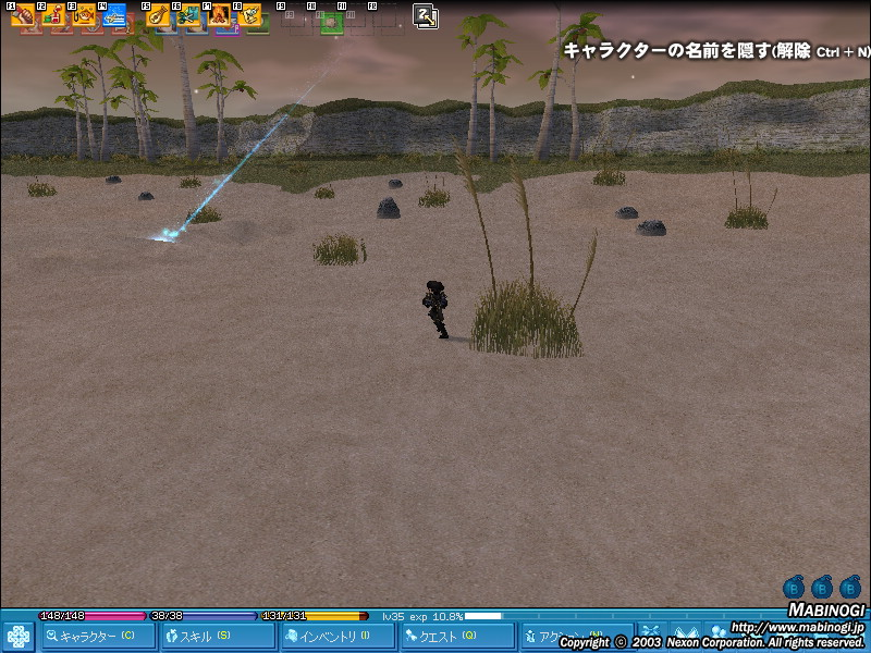 mabinogi_2008_07_04_001.jpg