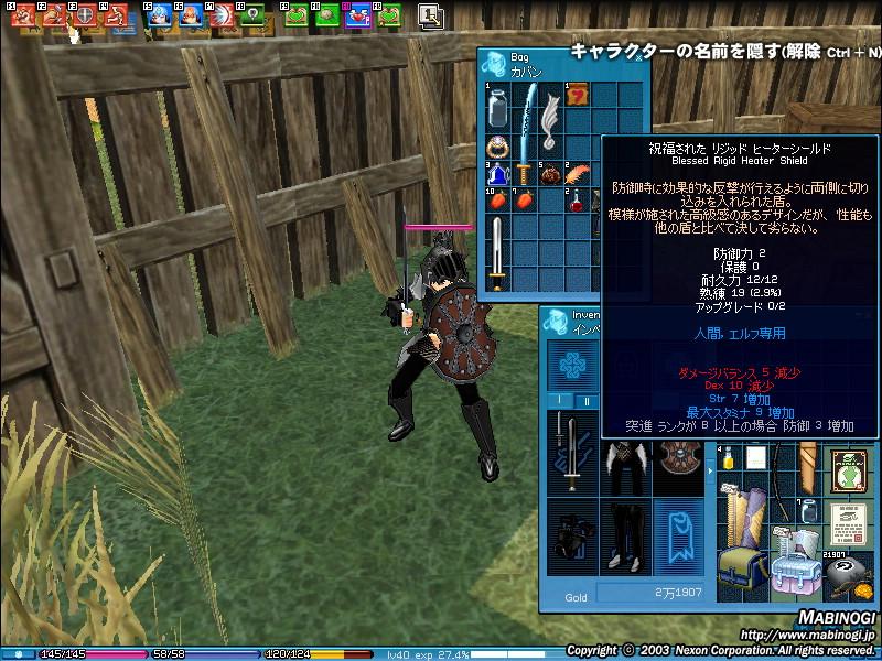 mabinogi_2008_07_25_004.jpg
