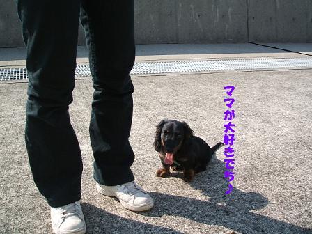 春のお散歩♪ 044