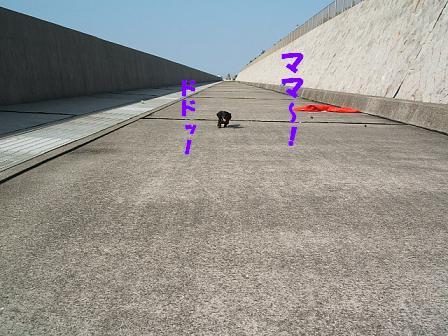 春のお散歩♪ 060