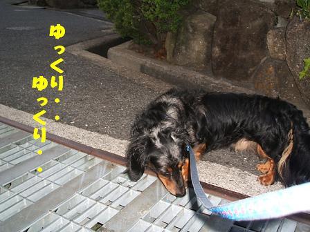 家族♪ 051