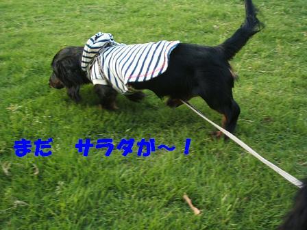 蜻蛉池公園♪ 029