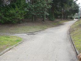 20080402park.jpg