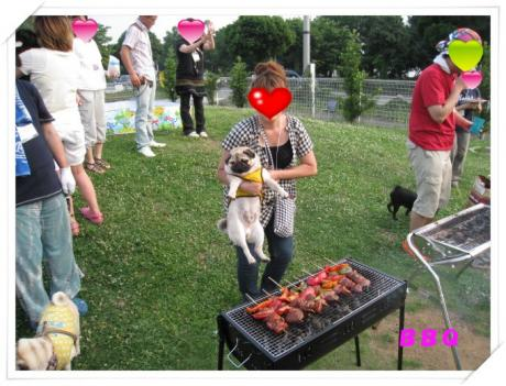 IMG_0937_convert_20080722123147.jpg