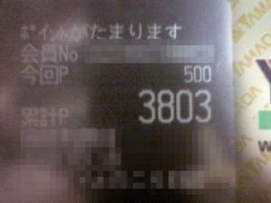 D1000044_convert_20080318204927_convert_20080318205056.jpg