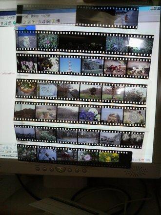 Film_1.jpg