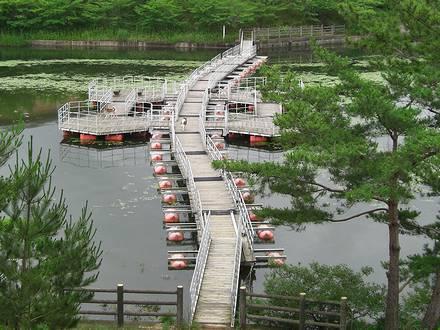 公園に渡るための浮橋
