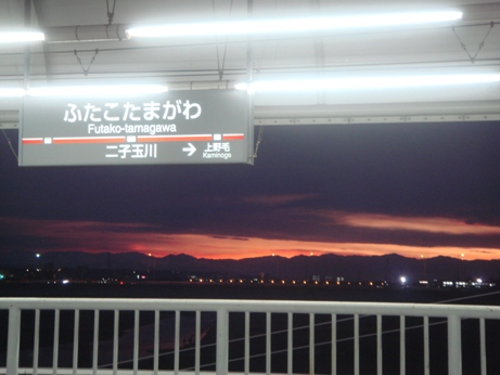 夕日の多摩川