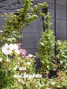2008薔薇空間