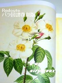 coco_book薔薇図譜復刻版