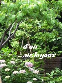coco.garden.hydrangea