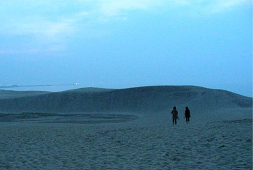 夜の砂丘2