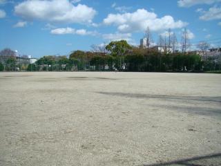 ground.jpg