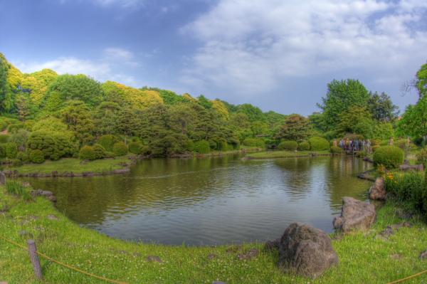 2008年5月-小石川植物園-1