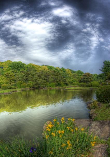 2008年5月-小石川植物園-6