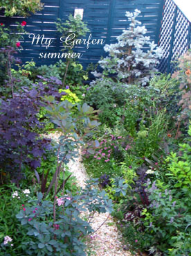 gardensummer.jpg