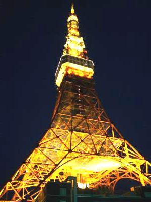 タワー 全景