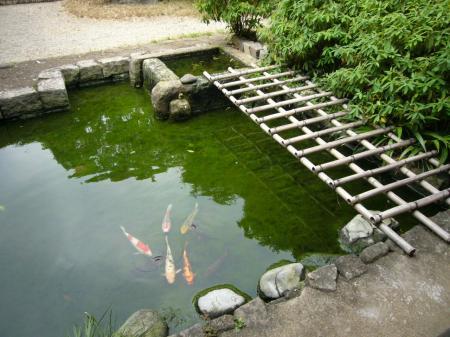 太田黒公園 池