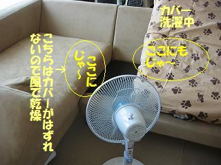 BlogNo150-4.jpg