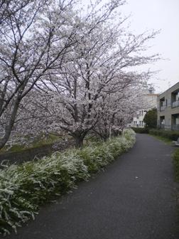 nagasogawa