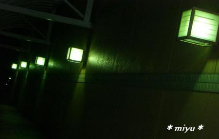 あるデパートの電灯*