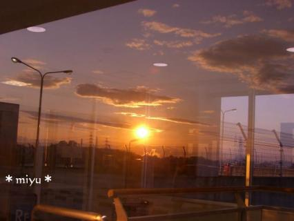 ガラスに反射。☆*゚+.!