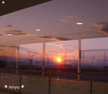 ガラスに反射。☆*゚+.NO,2