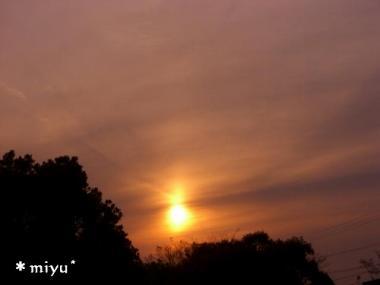 太陽柱.:*・゚☆.。.:*