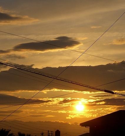 黄金色の夕日・:*:・゚☆