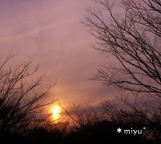 ふたつにちぎれる夕日☆.。.:*