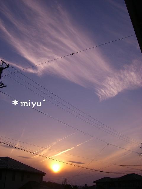 昨日の夕日o(*'▽')〇))
