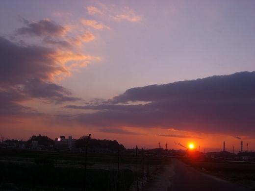 ピンクの夕日♪*