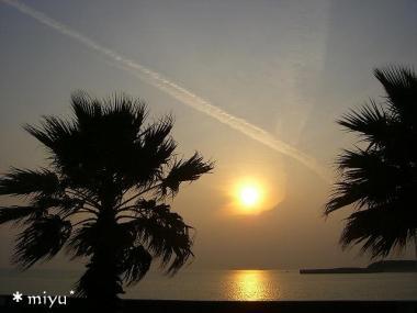 夕日が海に反射して*