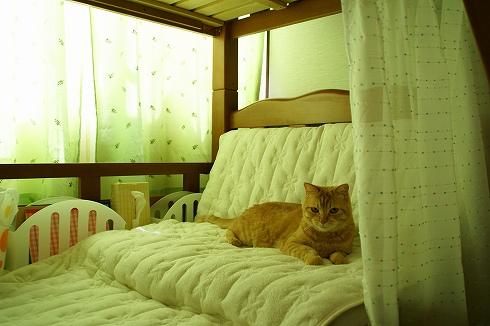 2段ベッドの改造した場所♪