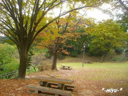 公園のベンチ。o.゚。*・○