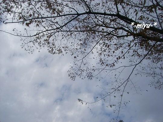 雲が覆う。。。