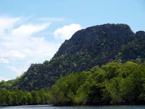 マングローブと岩壁