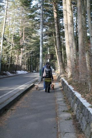 お散歩0309