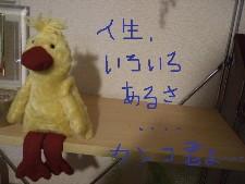 DSCF1108.jpg