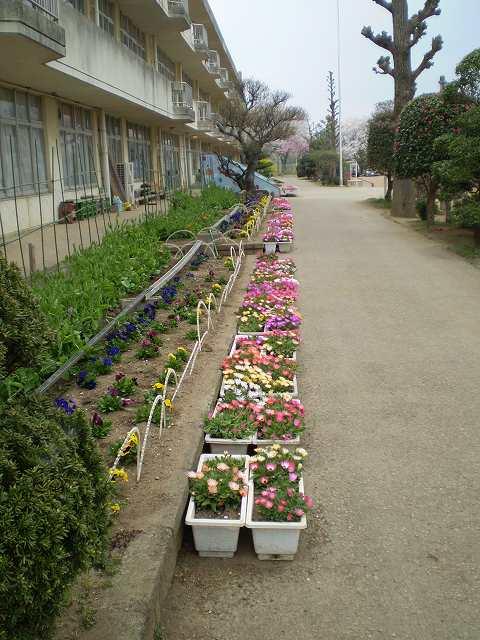 春 011