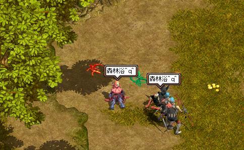 shinrinyoku2.jpg