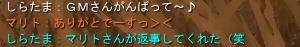 08-04-09-09.jpg