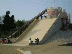 P4220085.jpg