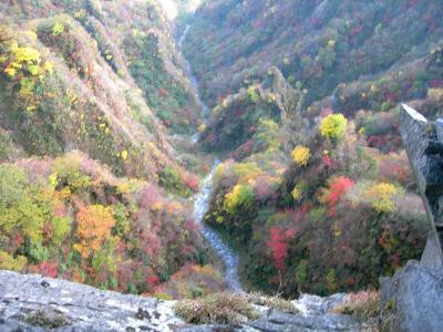 2006.10.29根子岳岩縦走 016
